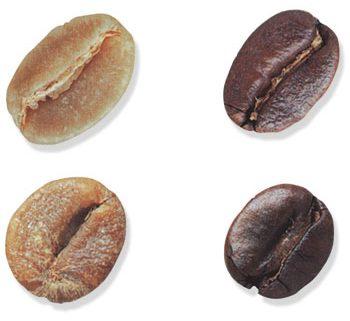 forma chicchi caffè